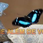 OLHE ALÉM DE VOCÊ (PPS)