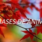 FRASES DE ÂNIMO