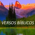 VERSOS BÍBLICOS 1