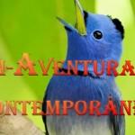 BEM-AVENTURANÇAS CONTEMPORÂNEAS (PPS)