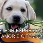 A MELHOR EXPRESSÃO DO AMOR É O TEMPO (PPS)