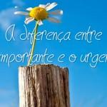 A DIFERENÇA ENTRE O IMPORTANTE E O URGENTE