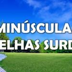 MINÚSCULAS ORELHAS SURDAS (PPS)