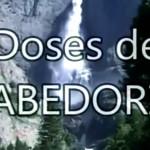 DOSES DE SABEDORIA
