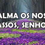 ACALMA OS NOSSOS PASSOS, SENHOR! (Vídeo)