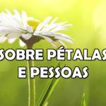 SOBRE PÉTALAS E PESSOAS (Vídeo)