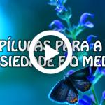 PÍLULAS PARA A ANSIEDADE E O MEDO (Vídeo e PowerPoint)