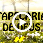 TAPEÇARIA DE DEUS (Vídeo e PowerPoint)