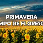 PRIMAVERA – TEMPO DE FLORESCER